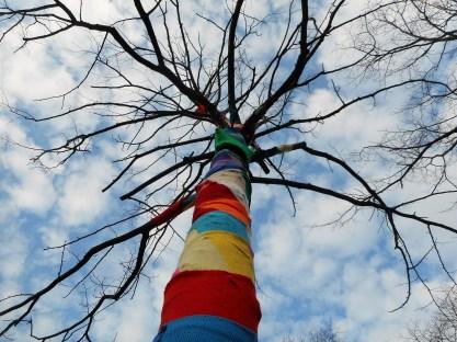 Yarn bombing action at the Regentesselaan in The Hague.