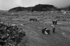tsunami_japan_nachtwey_11316_01240