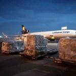 100+ Istilah Dalam Ekspor Impor yang Wajib Diketahui – Mister Exportir