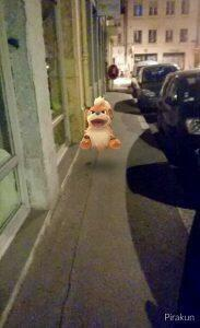 On ne croise pas tout les jours des Pokémon en pleine rue, c'est l'occasion d'en profiter.