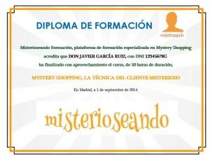 Diploma MS tecnica