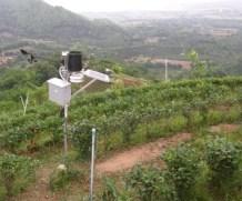 Tingginya Biaya Menghambat Adopsi IoT di Sektor Pertanian
