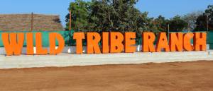 Wild Tribe Ranch