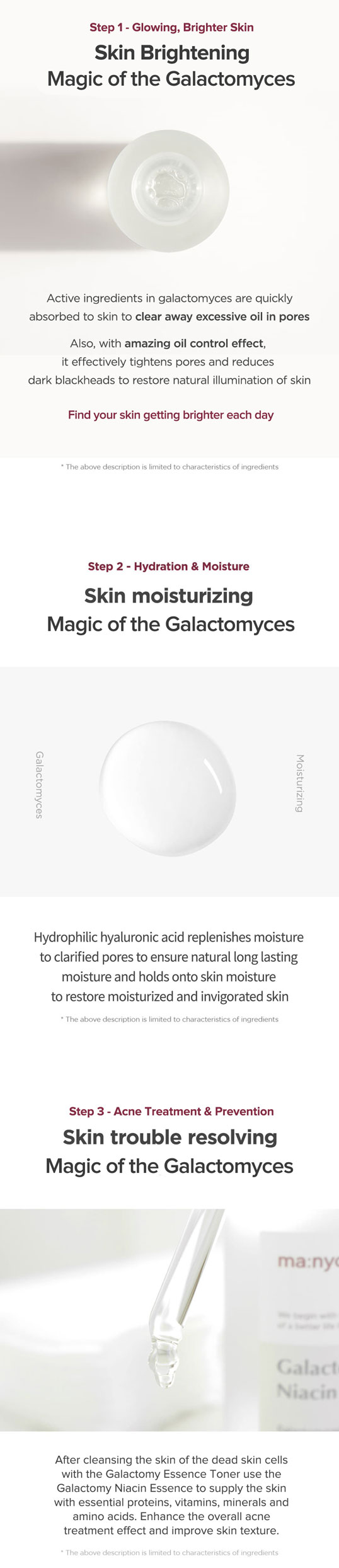the magic of the galactomyces