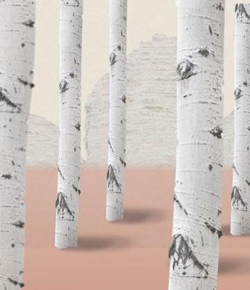 Finnish Birch Tree Water Skin's Genuine Moisture