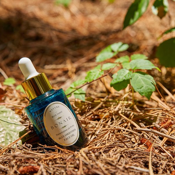Bonair Blue Smoother Face Oil how to use