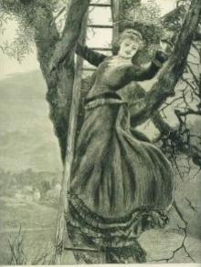 1876print_lady_picking_mistletoe_antique_2