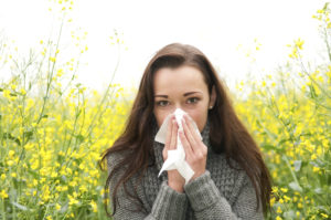 Discover how to rid your home of fall allergens with the following tips.