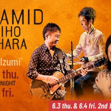 "PYRAMID featuring MIHO FUKUHARA ""A Tribute to Hirotaka Izumi"""