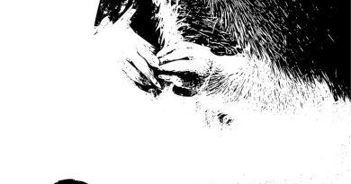 B&W image of Rat hands