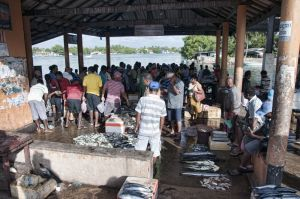 Mercado de pescado