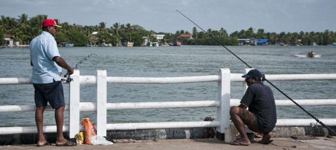 Qué ver en Negombo, primera parada en Sri lanka