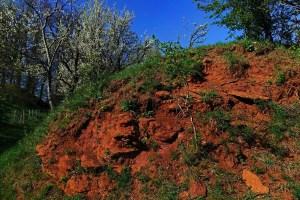 Rote Erde und Gestein am Wegesrand auf dem Rundwanderweg Schlossberg bei Heideck