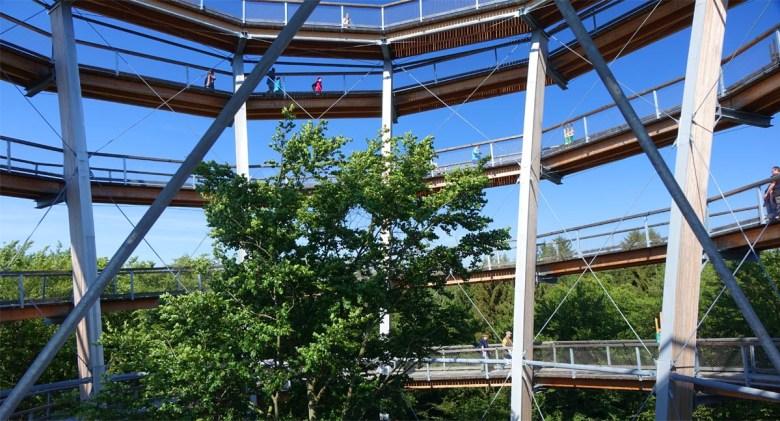 Turm auf dem Baumwipfelpfad Steigerwald bei Ebrach im Steigerwald