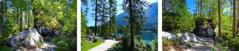 Felsen und Waldidylle im Zauberwald beim Hintersee im Nationalpark Berchtesgaden