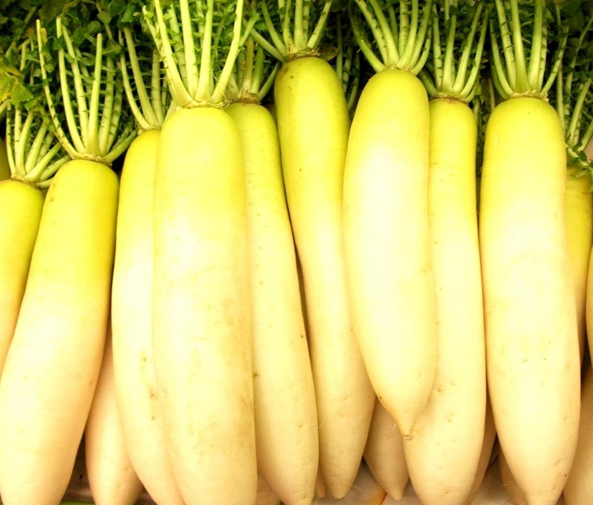 大根は加熱すると栄養が逃げる?気になる栄養と効能を調査!