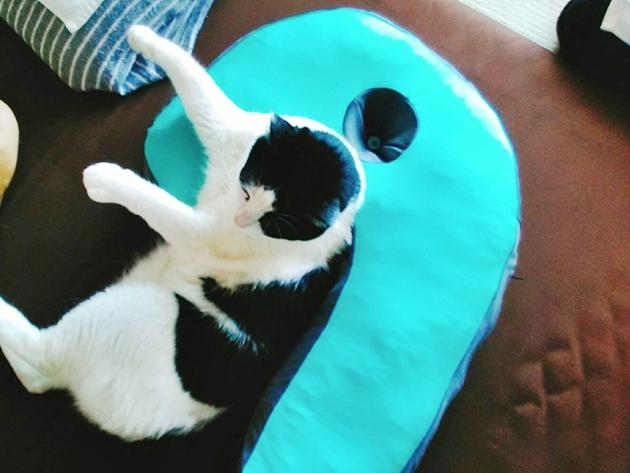 横向き枕サイズ