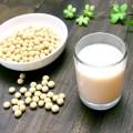 【驚愕】豆腐と豆乳は体に悪い!?大豆には毒素があるって本当?