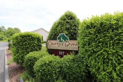 Cherry_Grove-0011