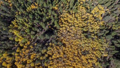 drone-aspen-changing-small-5