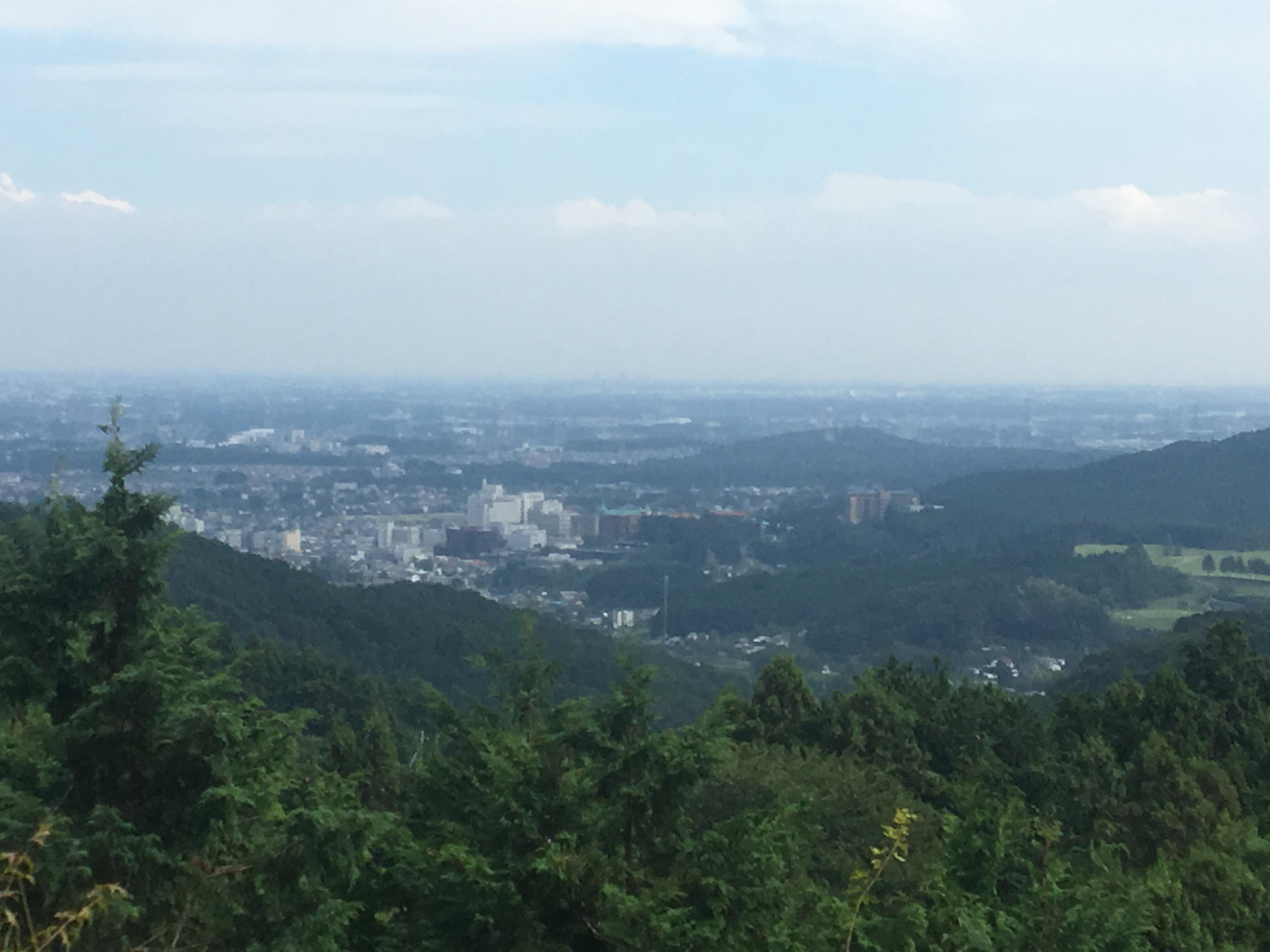 ありがとう根岸愛さん!毛呂山町 その7 日本最古の柚子の産地!桂木地区を巡る