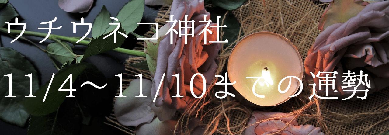 【ウチウネコ神社】11/4~11/10までの運勢