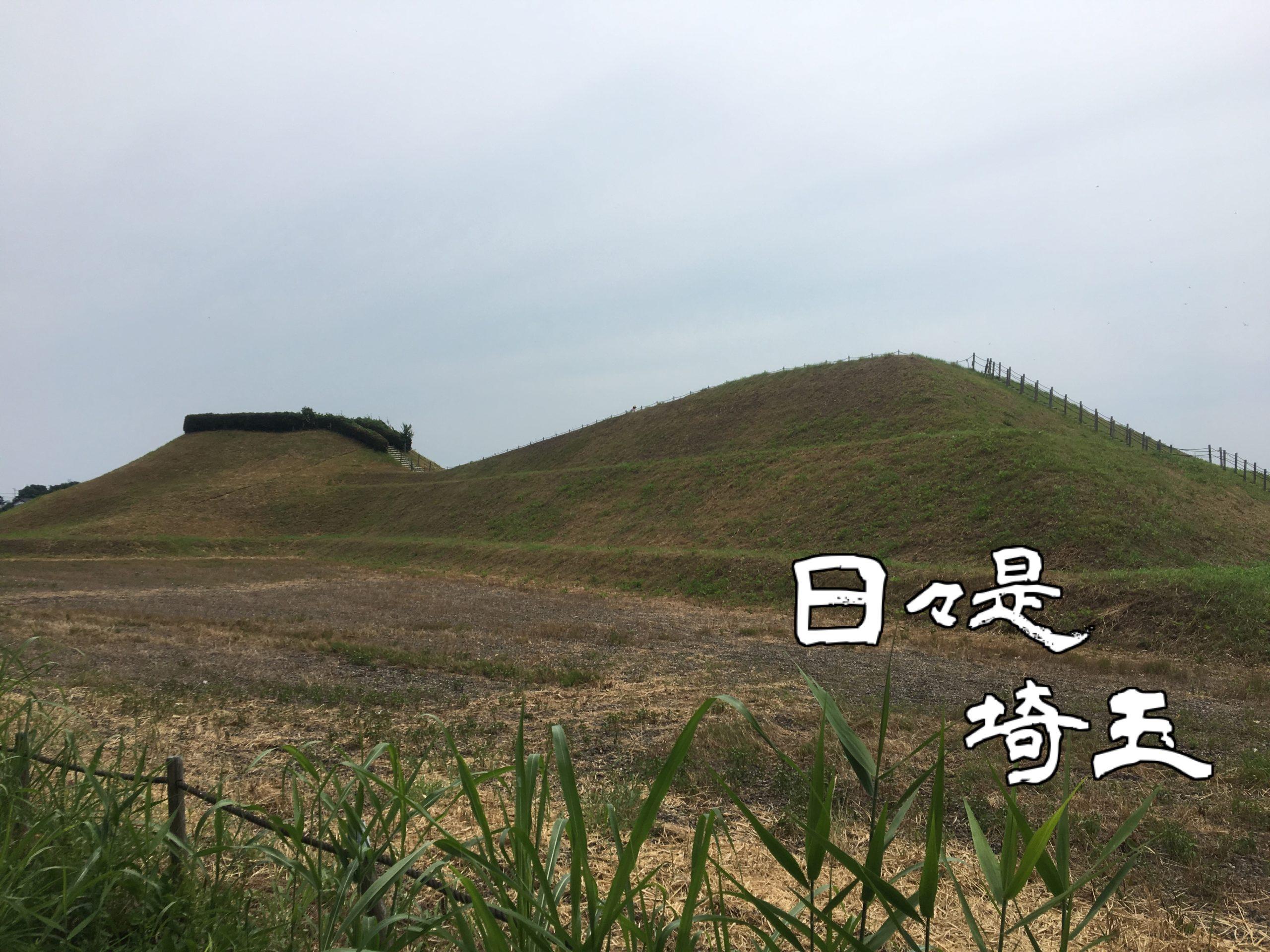 【日々是埼玉 2019/11/16】目指すは世界遺産 埼玉古墳群が県内初の特別史跡に指定