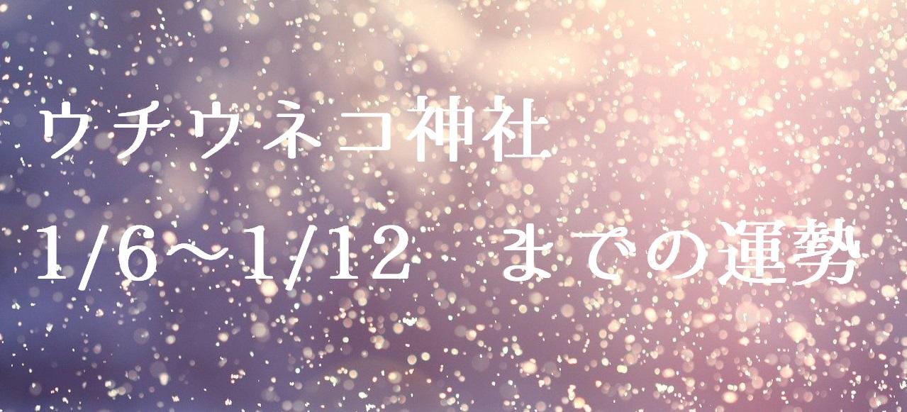 【ウチウネコ神社】1/6~1/12までの運勢