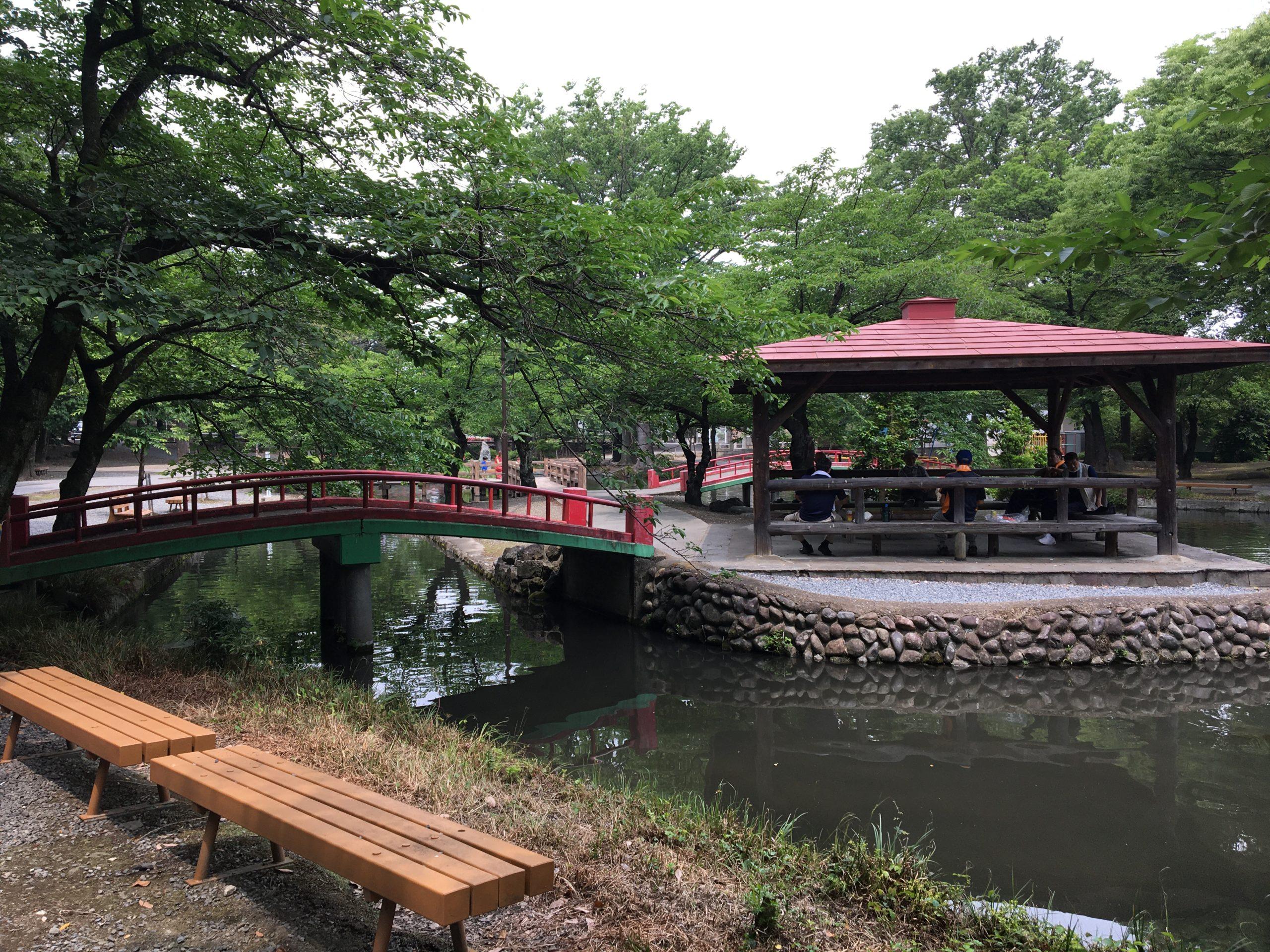 ちゃんと愛ある本庄市 その4 旧流沿いの桜の名所ー若泉公園