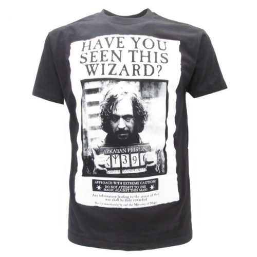 T-Shirt Have You Seen This Wizard Harry Potter