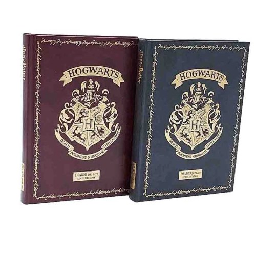 Diario Harry Potter Limited Edition 2021-2022 13x18cm