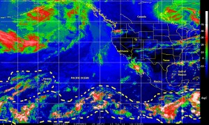 Color-enhanced infrared satellite image (NOAA) of the eastern Pacicifc Ocean, north of the equator, showing the ensemble of tropical waves and storm cells that persist over the region on 13 July 2014
