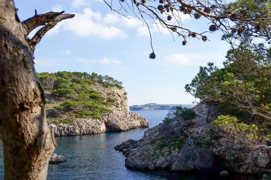 Caló d'en Monjo Calvia Mallorca