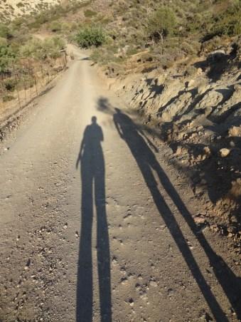 Lange Schatten: Abend.