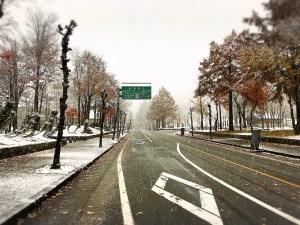 雪が降り寒くなりました!