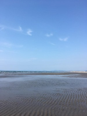 県立吹上浜海浜公園|吹上浜海岸