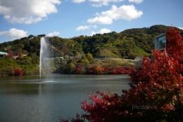 噴水と紅葉