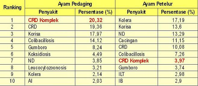 Ranking penyakit tahun 2010 pada ayam pedaging dan petelur