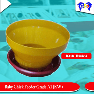 Baby chick feeder Grade A1 KW