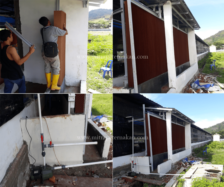 Ventilasi system kandang close house ayam