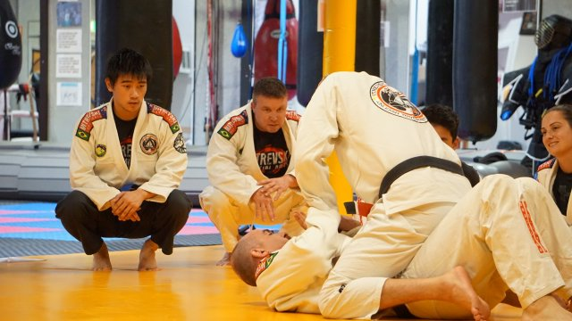 Gracie Jiu-Jitsu - Professional Brazilian Jiu-Jitsu