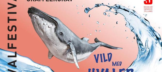 Vild med hvaler? Så kom til Hvalfestival i Gram Lergrav den 21. – 22. september.