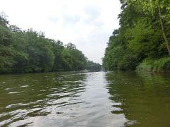 Flußauen