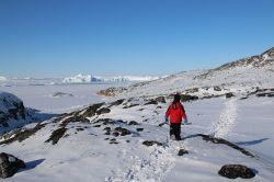 gut sichtbarer Trampelpfad am Eisfjord entlang