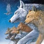 『ファオランの冒険』<br>Wolves of the Beyond