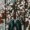 お花見が雨の場合の対処法 中止にしない代わりの案を提案します
