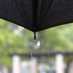 お葬式が雨の時の傘の色は?ビニール傘や折り畳み傘でもいい?