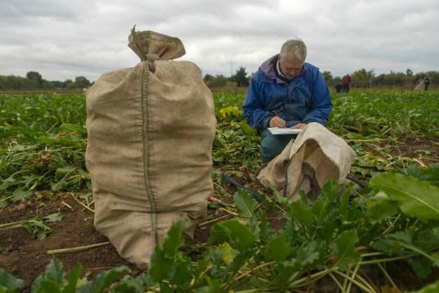 Die TH Bingen bildet auch Agraringenieure aus. Foto: Jonas von Blohn.