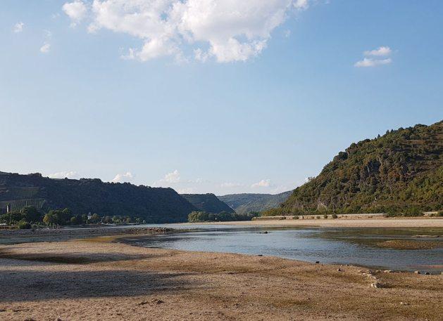 https://www.swr.de/swraktuell/rheinland-pfalz/Trockenheit-in-Rheinland-Pfalz-Rekord-bei-Niedrigwasser-im-Mittelrheintal,rhein-pegelstand-rekord-100.html