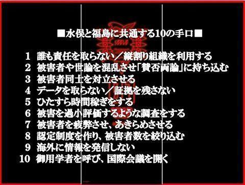 水俣と福島に共通する10の手口.jpg